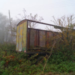 overgrown storage trailer in lode