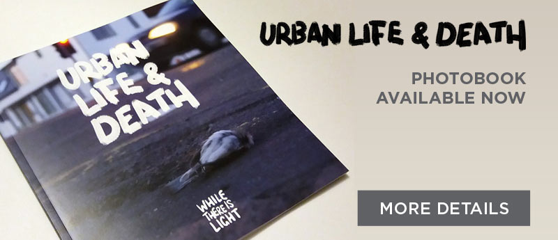 urban life and death urban photography photobook available now cover